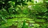 Jardín Botánico. Cortesía: IDT. Foto por David Gómez