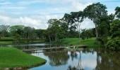 Campos de Golf (Trángulo del Café).  Fuente: www.campestrepereira.com