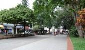 La Tebaida: Calle principal.  Fuente: www.panoramio.com - Foto por: giovafuentes