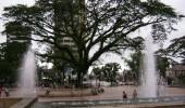 http://www.uff.travel/region/51/parque-los-libertadores-fuente-img14-imageshack-us-thumb.jpg