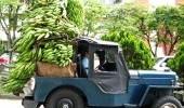 http://www.uff.travel/region/64/fiestas-de-la-cosecha-por-naty-rive-2-thumb.jpg
