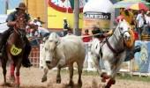 http://www.uff.travel/region/66/encuentro-mundial-del-coleo-fuente-www-llanoguia-com-thumb.jpg